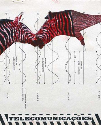 colagem ilustração Pati Peccin